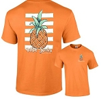 Diamond Hill Elementary Tangerine Pineapple