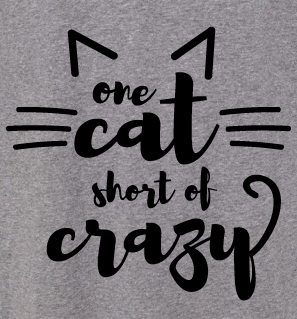 LIMITED EDITION One Cat Short of Crazy Raglan