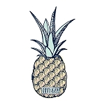 Southernology® Pineapple Logo Decal